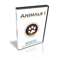 Animals I Sound Effects Library